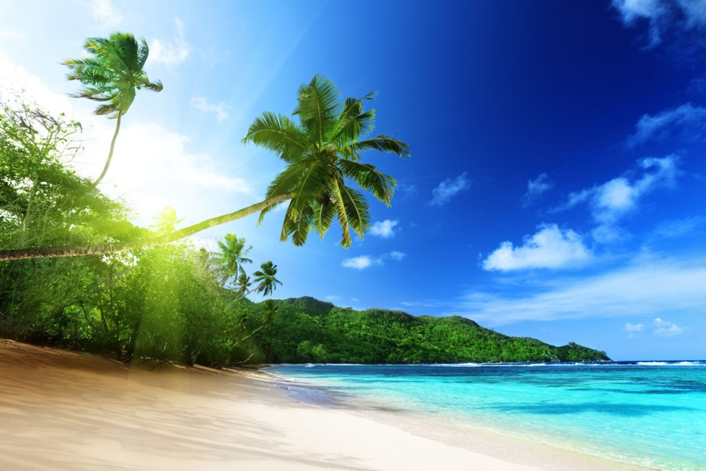 Island Trader Vacations Travel Services Department Explores Samana